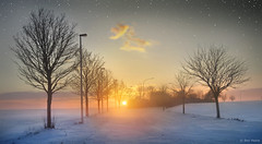New Year, New Hopes (Ben Heine) Tags: trees winter light wallpaper inspiration snow cold art love nature beauty silhouette contrast forest stars photography freedom evening countryside vanishingpoint scenery energy colorful die branch afternoon force friendship belgium belgique belgie image path lumire live duo air hiver sneeuw apocalypse dream picture peaceful atmosphere newyear oxygen together libert freeze hopes romantic neige strength conceptual tomorrow ensemble arbre froid imagery ecosystem vibration luminosity platteland 2011 theartistery snieg platpays hesbaye creativecomposition benheine braives flickrunited samsungimaging nx10 benheinecom