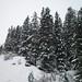 Les 3 Vallées - Winter '10/'11