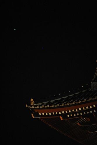 徳願寺の初詣