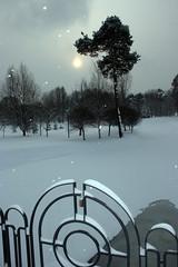 Снежный парк (Glebkach) Tags: winter snow minsk imagespace:hasdirection=false