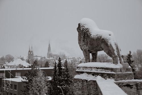 Mühlhausen - Löwen-Denkmal im Schnee