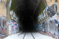 heart of darkness (Luna Park) Tags: nyc pet snow ny newyork graffiti tunnel lunapark rap rollers smells trackside slue feer reskew baby168 cash4 pantheoncatalog
