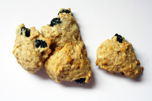 Apple Sauce and Blueberry Cookies