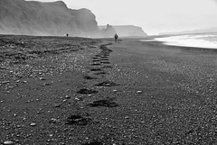 i will follow (dicksoto) Tags: iceland vk blacksandbeach vkmrdal
