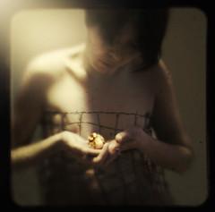 the nest (ladybugrock) Tags: portrait self 365 week2 ttv throughtheviewfinder kodakduaflex processingbybrookeshaden