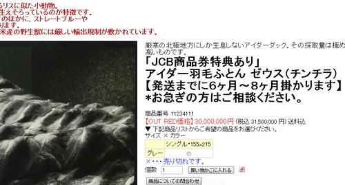 2011-01-18_1507