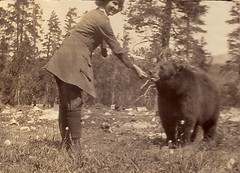 My great aunt Betty and a black bear (sctatepdx) Tags: blackbear oldsnapshot vintagesnapshot