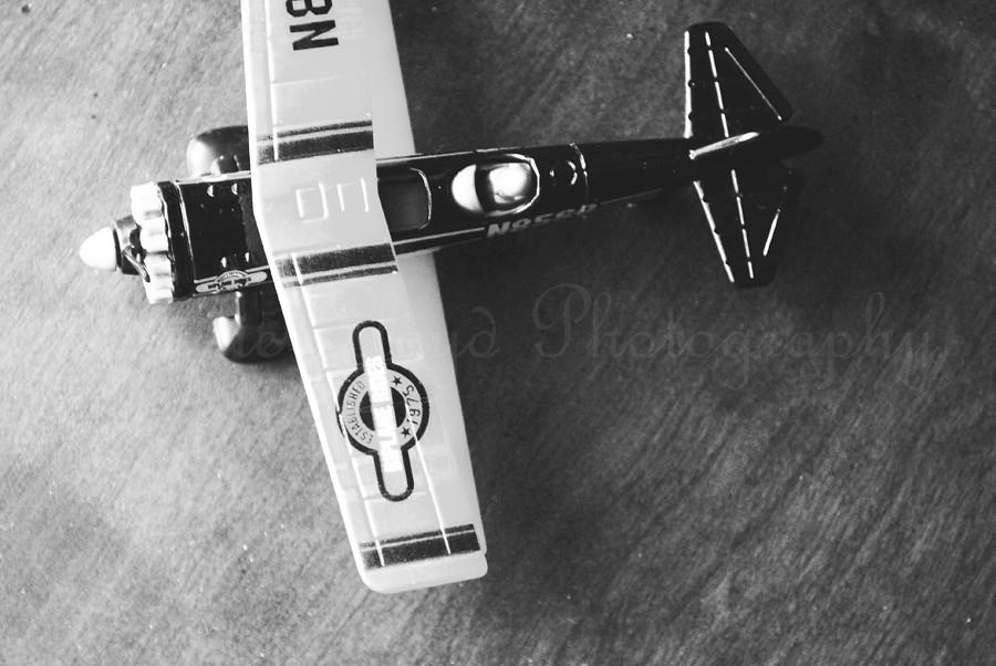 Plane-2--bw---wm