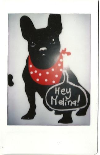 heymelina