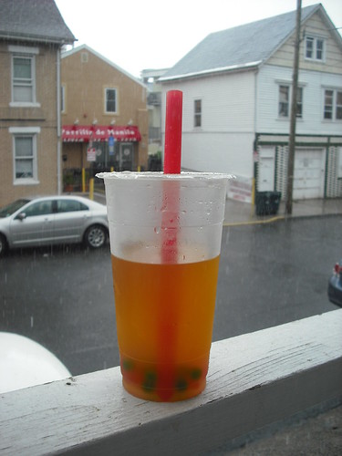 Bubble Tea in New Brunswick
