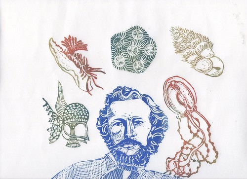 top Haeckel