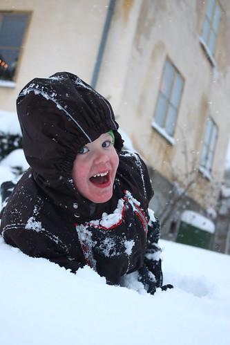 Gusten i snön