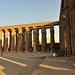 Egypte 06 Luxor (1660)