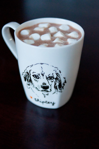 shipley dog mug with cocoa