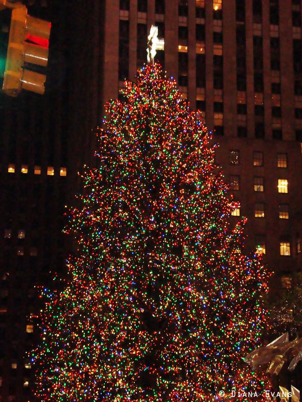 December 5th 2010 337