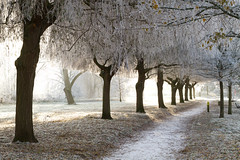 Frosty Stratford #13