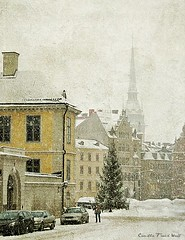 Winter in Stockholm (Milla's Place) Tags: city winter snow church buildings cityscape sweden stockholm christmastree textures textured riddarholmen realsnowflakes tatot skeletalmess lesbrumes magicunicornverybest shadowhousecreations