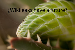 Wikileaks have a future