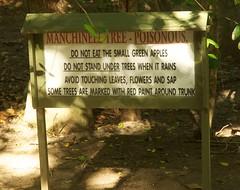 Poison trees