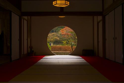 明月院 丸窓からの紅葉