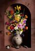 Niche Still Life (kevsyd) Tags: flowers spider niche lizard dragnfly kevinbest dutchstilllife