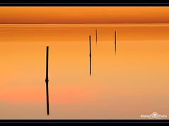 Delta - terapia (2) (manel pons) Tags: sunrise mar mediterraneo alba amanecer catalunya tarragona reflejos reflexes mediterrani deltadelebre terresdelebre deltadelebro larapita santcarlesdelarapita manolopons manelpons miradafavorita elsalfacs montsi