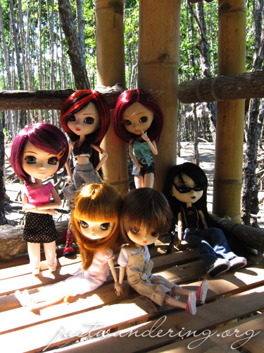 Dollie meet at the Bakhawan Eco Park
