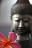 buddha (erangatennekoon) Tags: singapore emeraldhill araliya