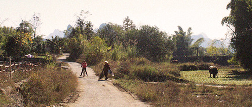 Rural yangshuo, day 43