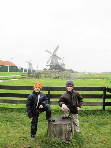 Windmills 2010