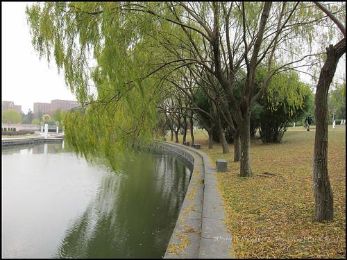 2010-12-08 Shanghai 031P07