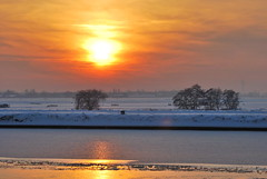 Winter Wonderland (OurPhotoWork) Tags: travel winter sunset holland bird netherlands birds zonsondergang nikon nederland explore nl wintertime wonderland winterwonderland ijs zwaan alphenaandenrijn zwanen ourphotowork