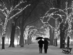 We're Happy Tonight... (Mike Cialowicz) Tags: winter people blackandwhite bw snow silhouette boston night umbrella lights nikon couple snowy silhouettes snowfall umbrellas figures bnw vr dx bostonist d90 1685 1685mmf3556gvr 1685mmvr