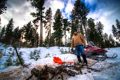 Chainsaw Wally (AlexKrengel) Tags: wood portrait tree nikon chainsaw tokina firewood hdr snowmobile 11m fallentree cleelum stihl d90 choppingwood cuttingwood