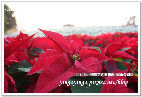 2010花博_圓山公園區991212_I5878