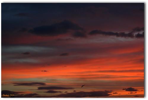 Les couleurs de l'aube