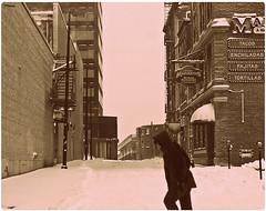 Free Street Walker (Corey Templeton) Tags: street city winter urban snow cold portland downtown december wind maine freezing nikond50 walker blizzard oakstreet 2010 12272010