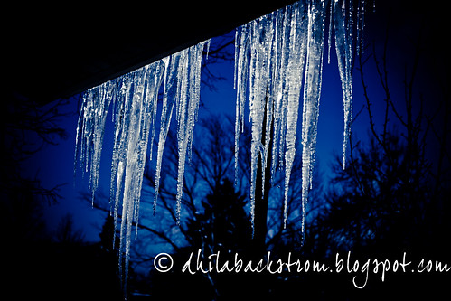 icicles-6