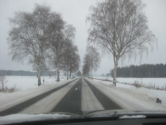 Schnee in Celle (1)