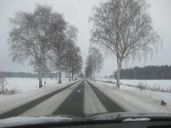 Schnee in Celle (1)