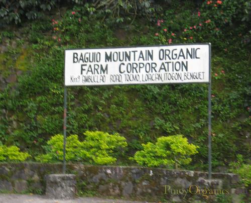 Pinoy Organics-Baguio Organic Farm