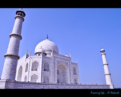 A View of Taj