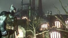 Batman Arkham Asylum THQ