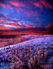 Sunrise Frost (Phil~Koch) Tags: winter sunset snow nature wisconsin clouds sunrise landscape phil koch horizons envireonment horizonsart