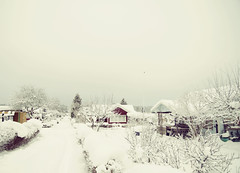 Winterday (~ Maria ~) Tags: road houses winter snow gardens skarpnck alotment