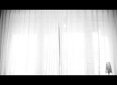 Day #4  365 Good Morning. (Stefano Santucci - www.stefanosantucci.it) Tags: morning light window good finestra goodmorning luce buongiorno