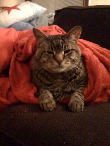Parker Blanket