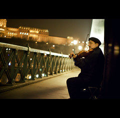 Day Eight (ODPictures Art Studio LTD - Hungary) Tags: bridge portrait musician music castle river hungary budapest violin 365 duna magyar buda híd vár zene violon portré folyó hegedű zenész orbandomonkoshu