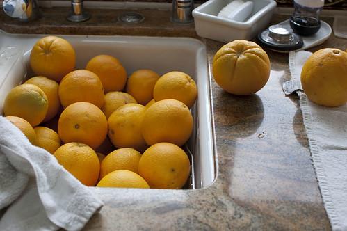 sink, oranges