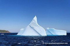 Canada experience : Iceberg in Witless Bay (My Planet Experience) Tags: voyage ca trip travel canada ice water iceage newfoundland labrador bue central stjohns canadian atlantic glacier east adventure glaciers iceberg nl 1001nights eastern icefields avalon icebergs eastcoast canadien oean atlantique aventure nf terreneuve witlessbay boattours flickraward cteest 1001nightsmagiccity mygearandme mygearandmepremium mygearandmebronze mygearandmesilver mygearandmegold mygearandmeplatinum mygearandmediamond aboveandbeyondlevel4 aboveandbeyondlevel1 flickrstruereflection1 flickrstruereflection2 flickrstruereflection3 flickrstruereflection4 flickrstruereflection5 flickrstruereflection6 flickrstruereflection7 flickrstruereflectionexcellence aboveandbeyondlevel2 aboveandbeyondlevel3